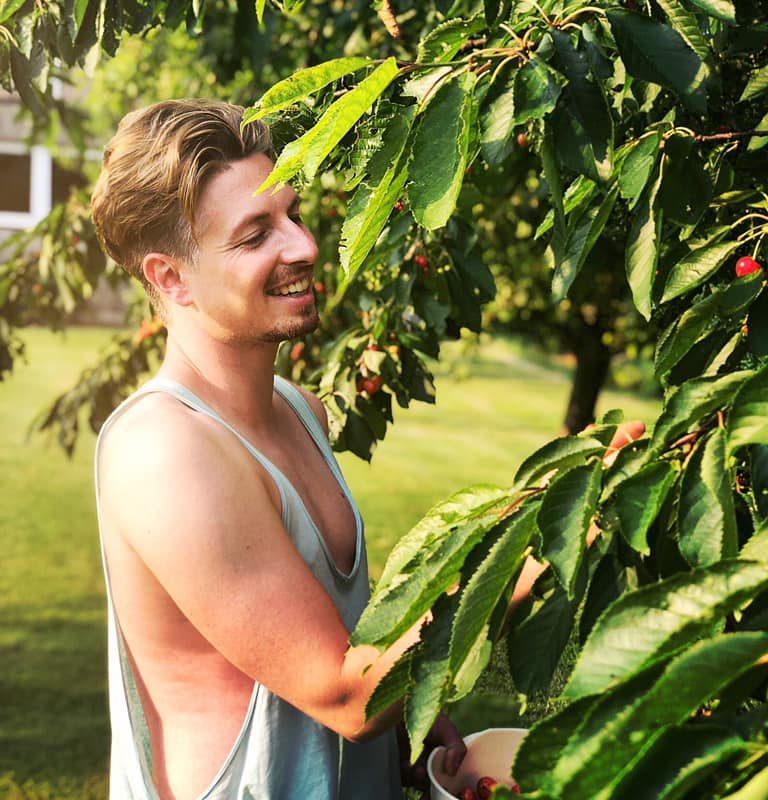 Gestern war es Zeit, die Kirschen vom Baum im Garten zu pflücken! Es war so m ...